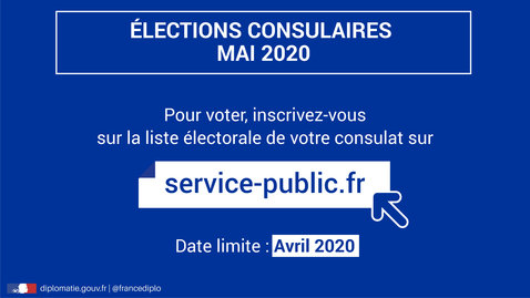 Election des conseillers consulaires 2020